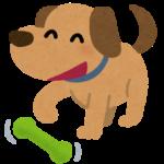 徳島のドックカフェおすすめ2018!愛犬家が足を運ぶ5選!